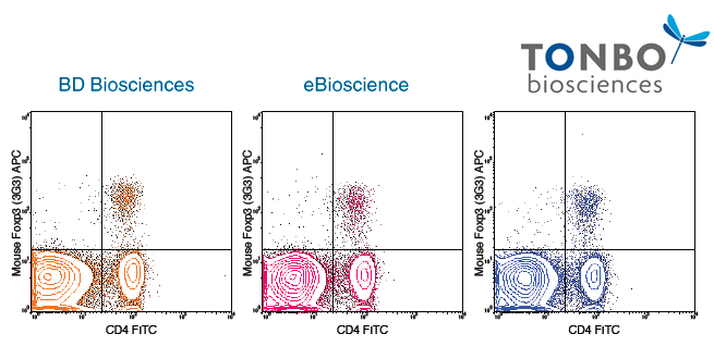 Foxp3 / Transcription Factor Staining Buffer Kit – Analysis of Mouse Foxp3